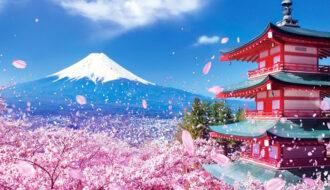 Top 5 Địa Điểm Bạn Không Nên Bỏ Lỡ Khi Đến Nhật Bản